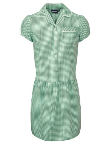 g-l-ashley-gingham-dress-age-1011-years