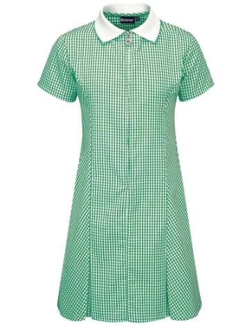 g-l-avon-gingham-dress-age-56-years
